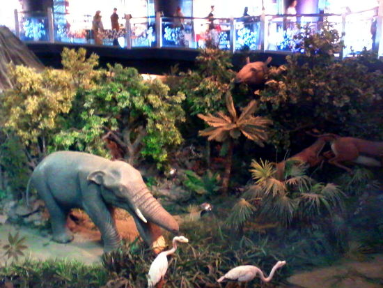There's a platybelodon in here. I should say hi or something