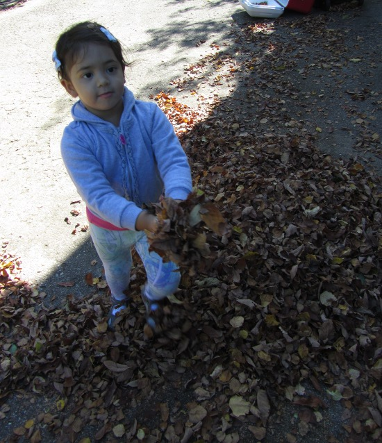 Throwing leaves around