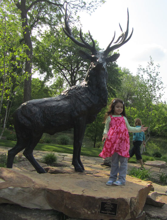 Yaya and an elk in Elkhart