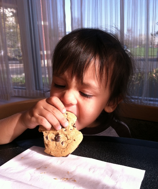Noshing on a cookie
