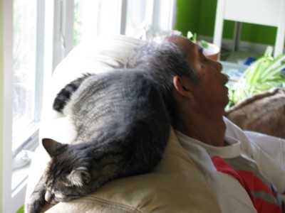 Tok and Lily sleeping